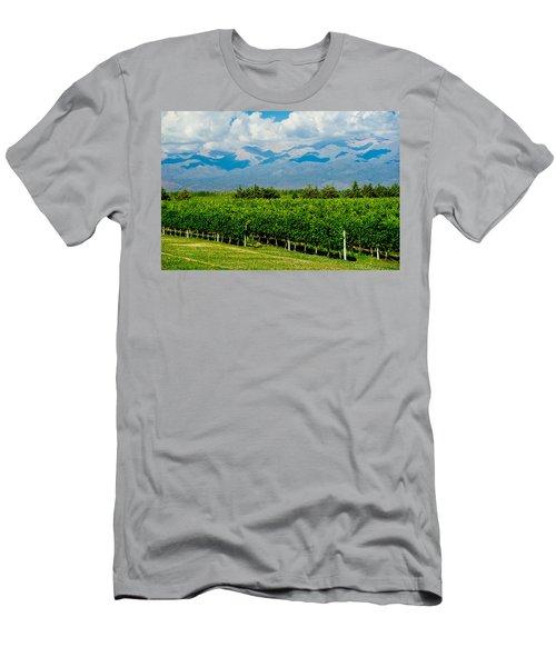 Andes Vineyard Men's T-Shirt (Athletic Fit)