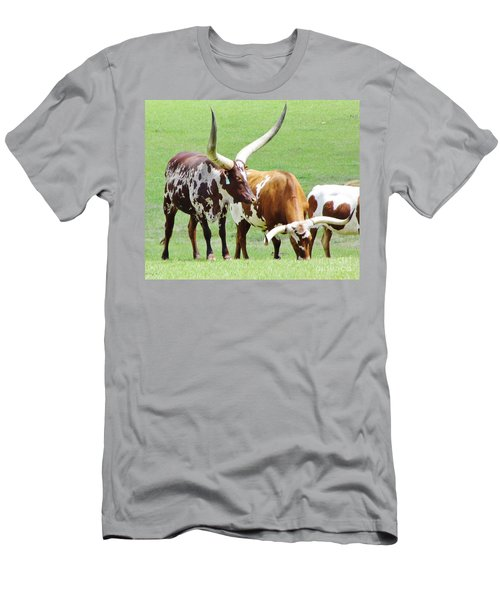 Ankole And Texas Longhorn Cattle Men's T-Shirt (Athletic Fit)
