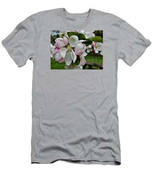 Apple Blossoms 2 Men's T-Shirt (Slim Fit) by VLee Watson
