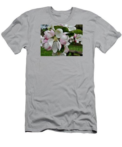 Apple Blossoms 2 Men's T-Shirt (Athletic Fit)