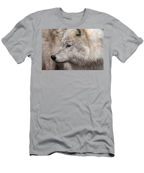 Arctic Wolf Men's T-Shirt (Slim Fit) by Eunice Gibb
