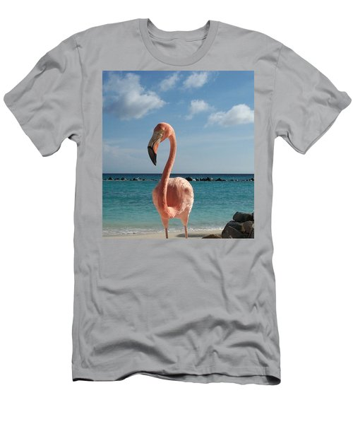 Aruba Hairy Eyeball Men's T-Shirt (Athletic Fit)