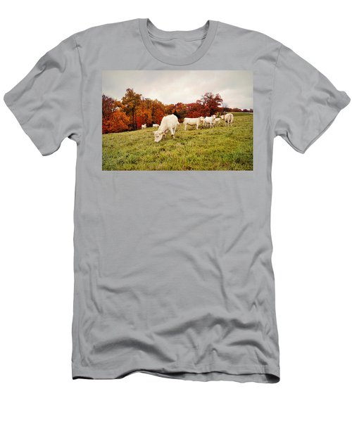 Autumn Pastures Men's T-Shirt (Athletic Fit)
