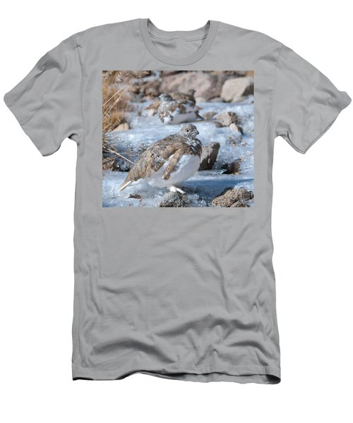 Autumn Plumage White-tailed Ptarmigan Men's T-Shirt (Athletic Fit)