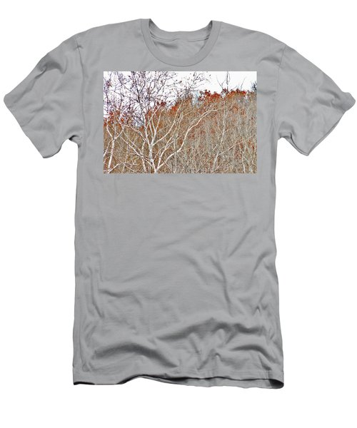 Autumn Sycamores Men's T-Shirt (Athletic Fit)