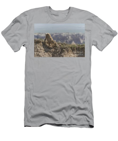 Baby Bighorn In The Badlands Men's T-Shirt (Athletic Fit)