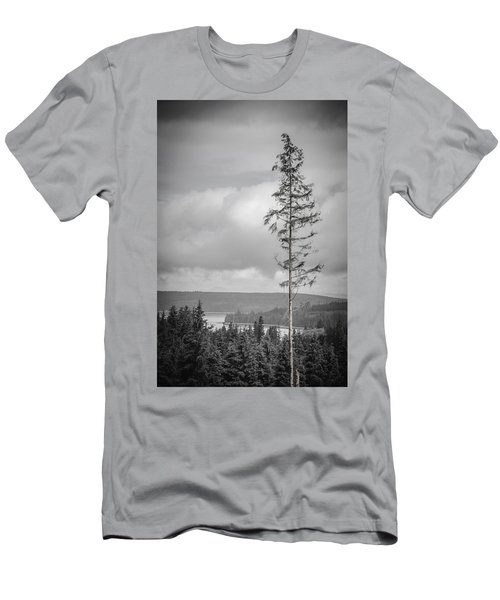 Tall Tree View Men's T-Shirt (Athletic Fit)