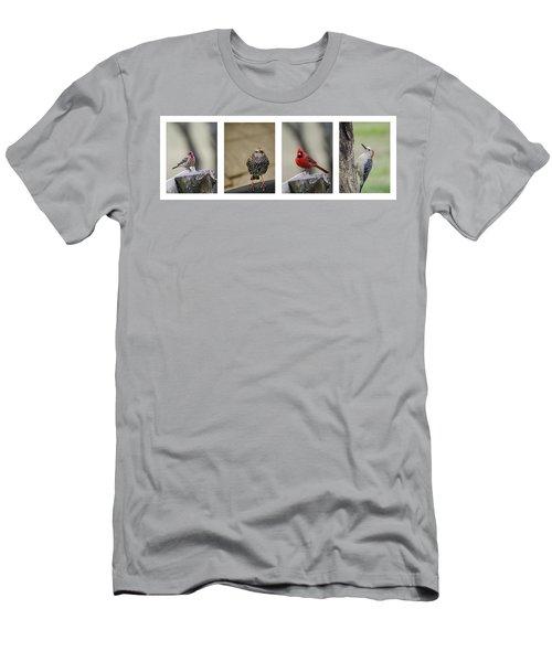 Backyard Bird Set Men's T-Shirt (Athletic Fit)
