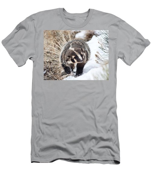 Badger In The Snow Men's T-Shirt (Athletic Fit)