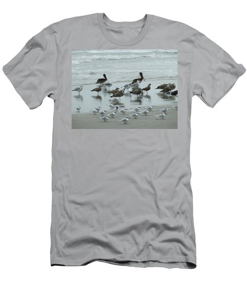 Beach Birds Men's T-Shirt (Athletic Fit)