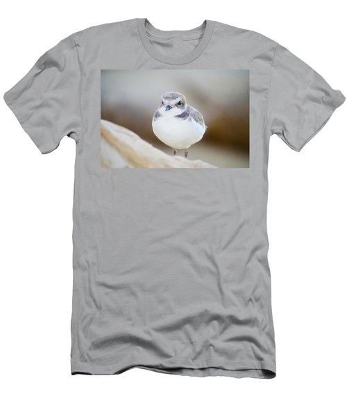 Beautiful Bird Men's T-Shirt (Athletic Fit)