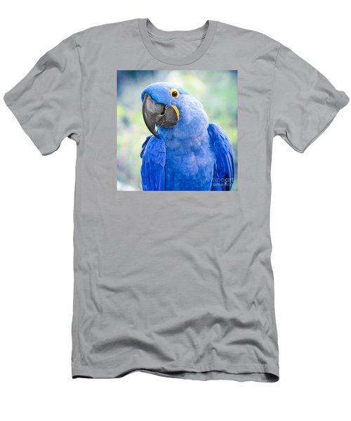 Beauty Is An Enchanted Soul Men's T-Shirt (Athletic Fit)