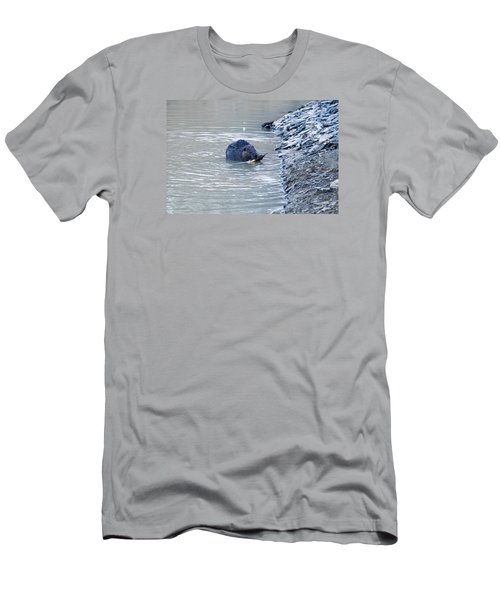 Beaver Chews On Stick Men's T-Shirt (Slim Fit) by Chris Flees