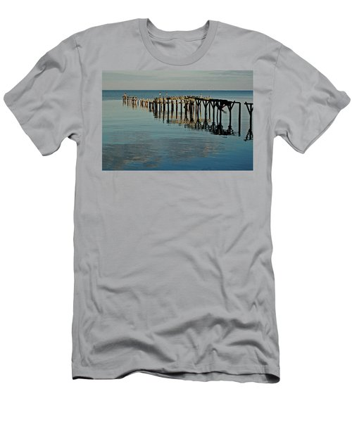 Birds On Old Dock On The Bay Men's T-Shirt (Athletic Fit)