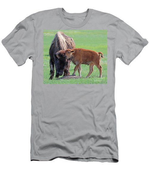 Men's T-Shirt (Slim Fit) featuring the photograph Bison With Young Calf by Bill Gabbert