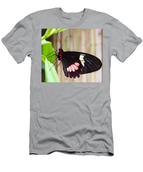 Black And Red Cattleheart Butterfly Men's T-Shirt (Slim Fit) by Amy McDaniel