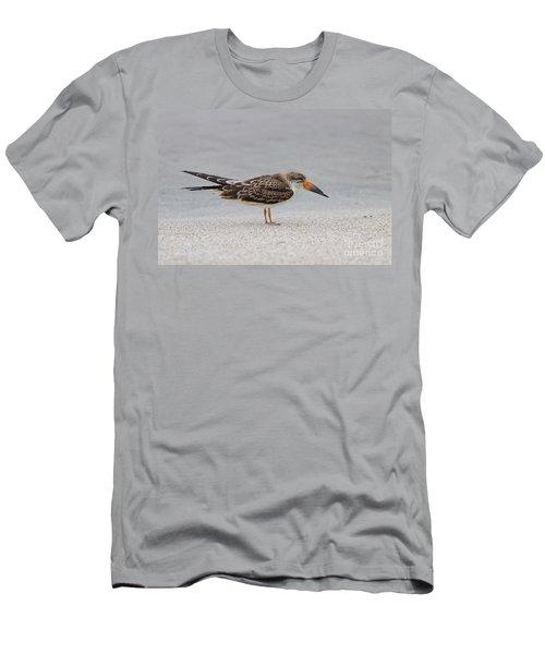 Black Skimmer Men's T-Shirt (Athletic Fit)