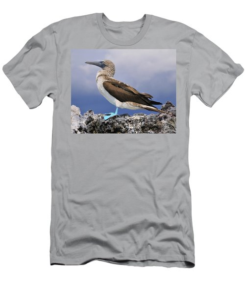 Blue-footed Booby Men's T-Shirt (Slim Fit) by Tony Beck