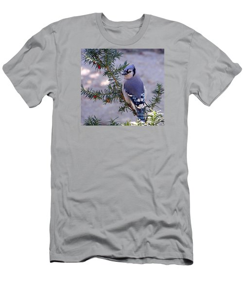 Men's T-Shirt (Slim Fit) featuring the photograph Blue Jay - Morning Visitor  by Susan  Dimitrakopoulos