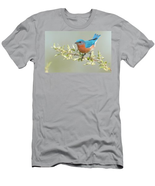Bluebird Floral Men's T-Shirt (Athletic Fit)