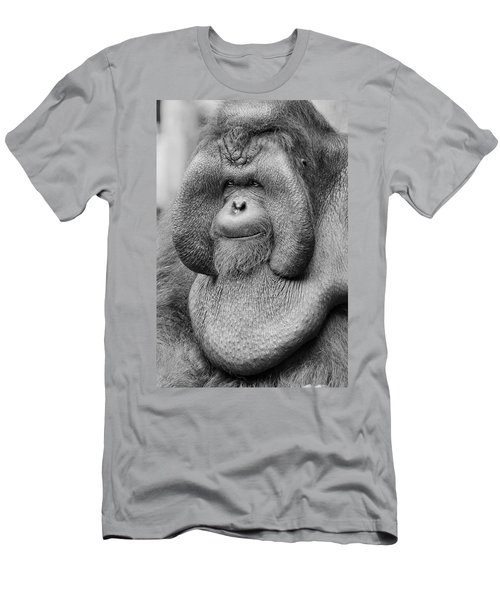 Bornean Orangutan IIi Men's T-Shirt (Athletic Fit)