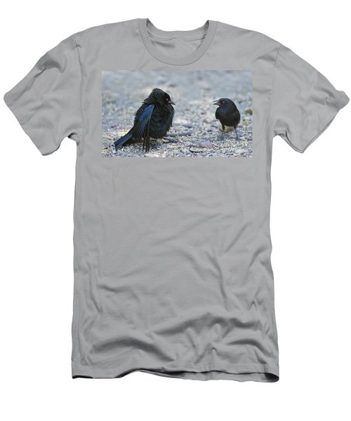 Bronzed Cowbird Display Men's T-Shirt (Athletic Fit)