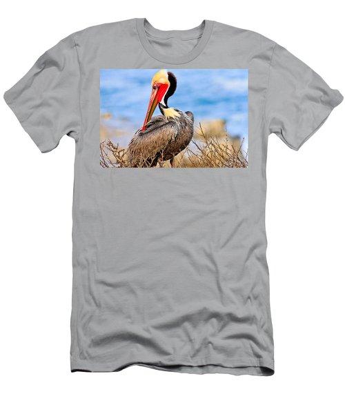 Brown Pelican Posing Men's T-Shirt (Athletic Fit)