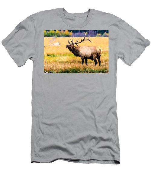 Bull Elk - Colorado Men's T-Shirt (Athletic Fit)