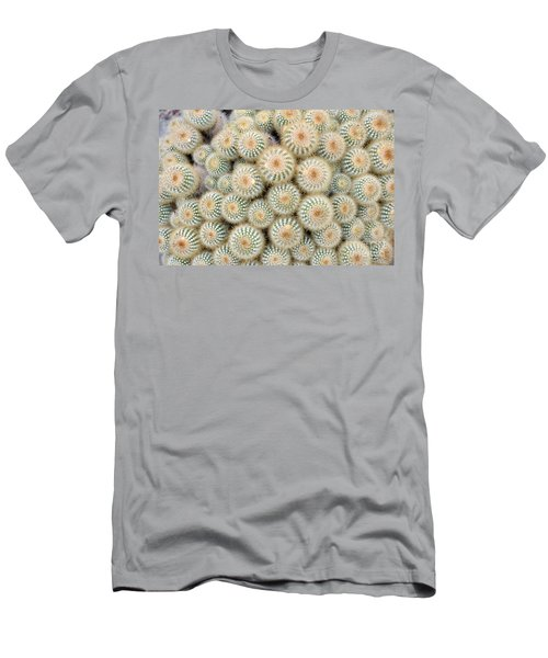 Cactus 35 Men's T-Shirt (Athletic Fit)