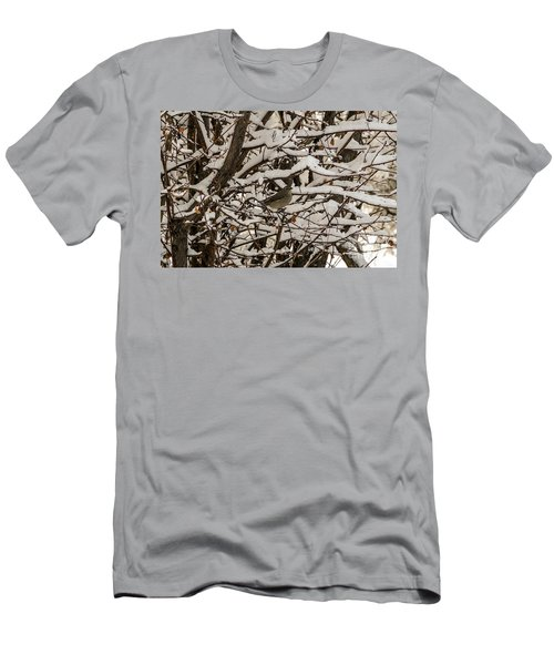 Camouflaged Thrush Men's T-Shirt (Athletic Fit)