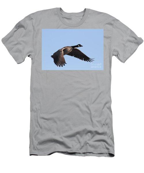 Canada Goose In Flight 7d21956 Men's T-Shirt (Athletic Fit)