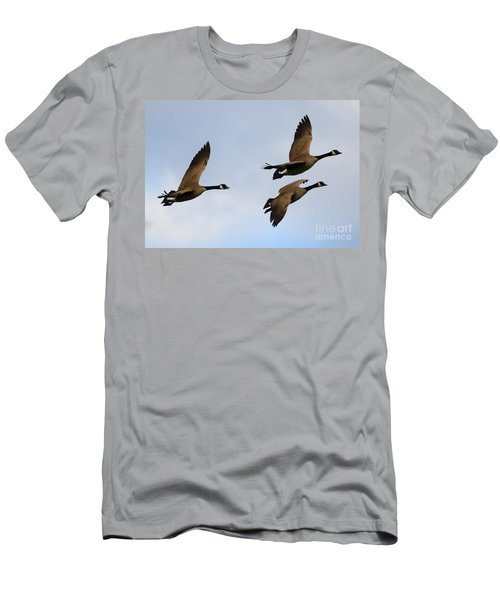 Canadian Geese Trio Men's T-Shirt (Athletic Fit)