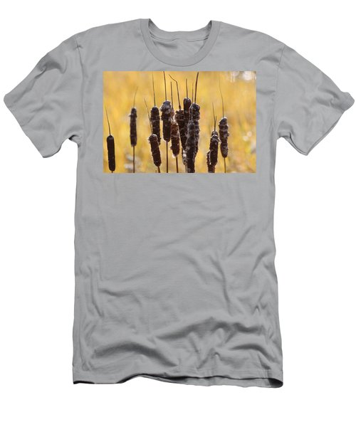 Cat Tails In November Men's T-Shirt (Athletic Fit)