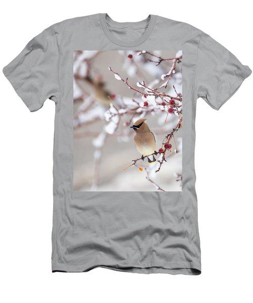 Cedar Waxwing Men's T-Shirt (Slim Fit)