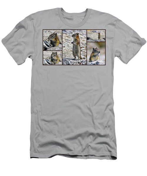 Chipmunk Collage Men's T-Shirt (Athletic Fit)