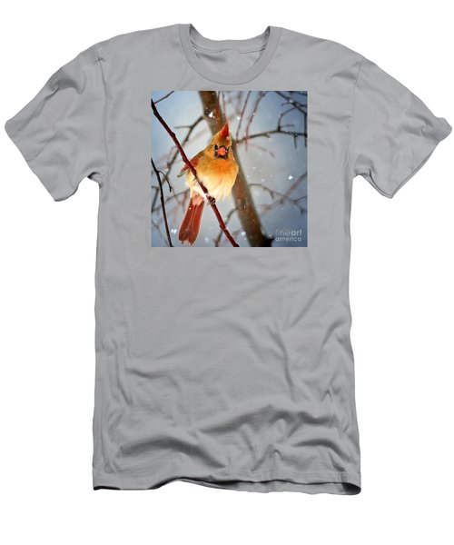 Northern Cardinal Snow Scene Men's T-Shirt (Athletic Fit)