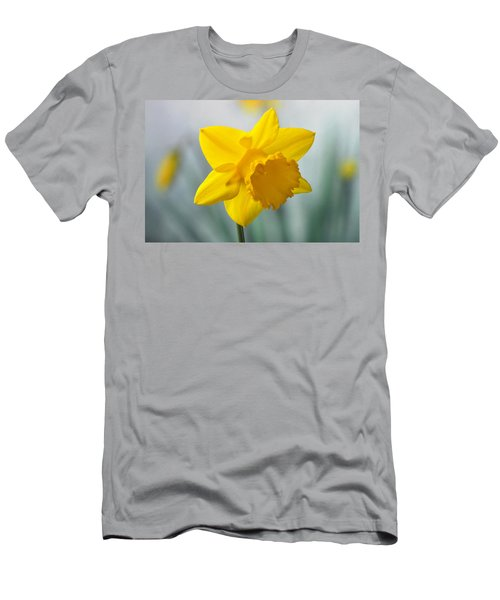 Classic Spring Daffodil Men's T-Shirt (Athletic Fit)