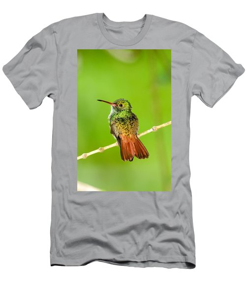 Close-up Of Rufous-tailed Hummingbird Men's T-Shirt (Athletic Fit)