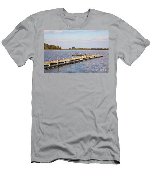 Cormorants And Seagulls On Old Dock Near Blackwater  National Wildlife Refuge Near Cambridge Md Men's T-Shirt (Athletic Fit)