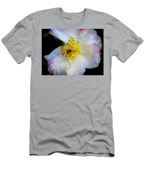 Cotton Candy Men's T-Shirt (Athletic Fit)