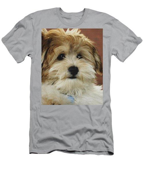 Cutie Pie Men's T-Shirt (Slim Fit) by James C Thomas