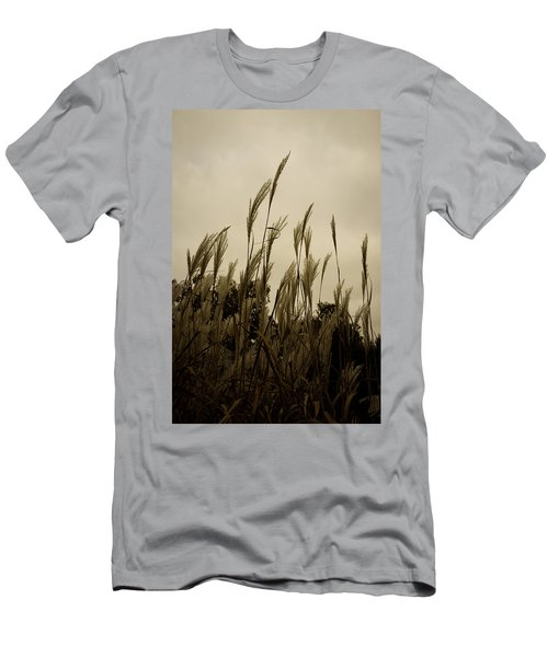 Dancing Grass Men's T-Shirt (Athletic Fit)