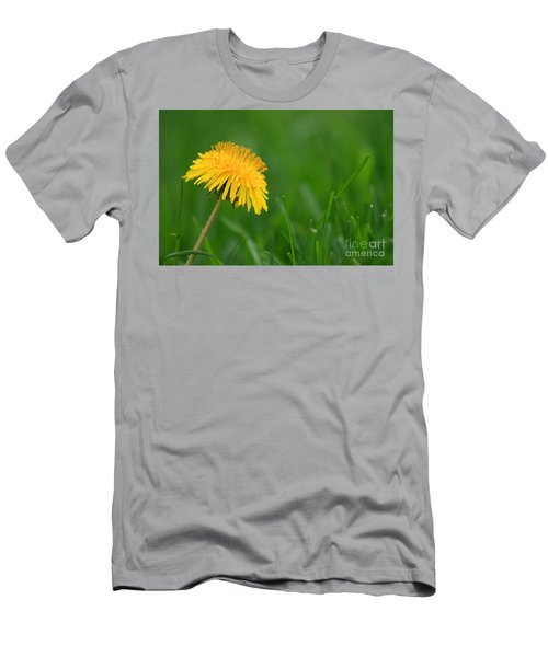 Dandelion Flower Men's T-Shirt (Athletic Fit)