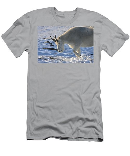 Digging For Dinner Men's T-Shirt (Athletic Fit)