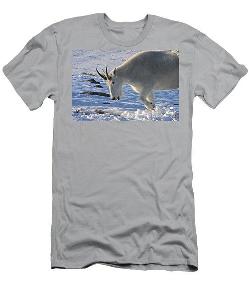 Digging For Dinner Men's T-Shirt (Athletic Fit)