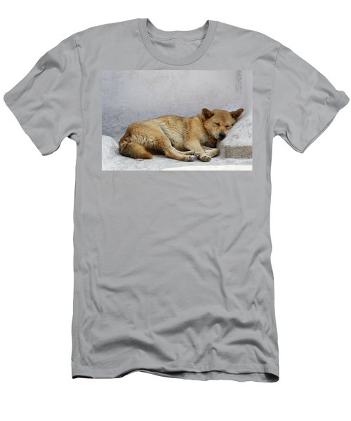 Dog Sleeping Men's T-Shirt (Athletic Fit)