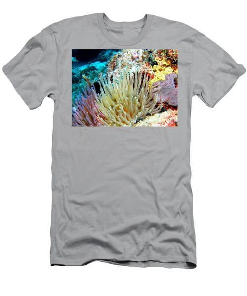 Double Giant Anemone And Arrow Crab Men's T-Shirt (Slim Fit) by Amy McDaniel