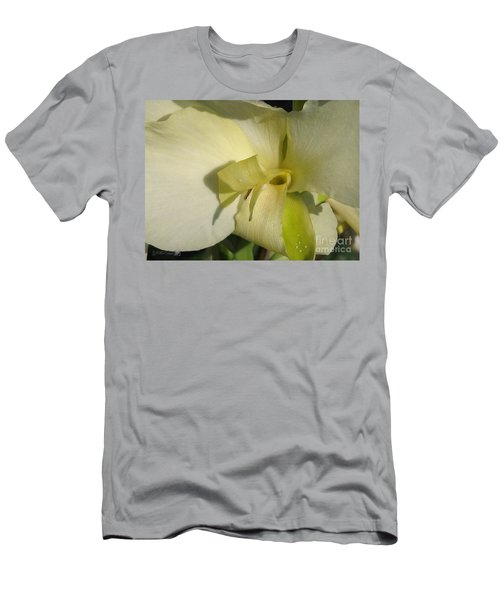 Dwarf Canna Lily Named Ermine Men's T-Shirt (Slim Fit) by J McCombie
