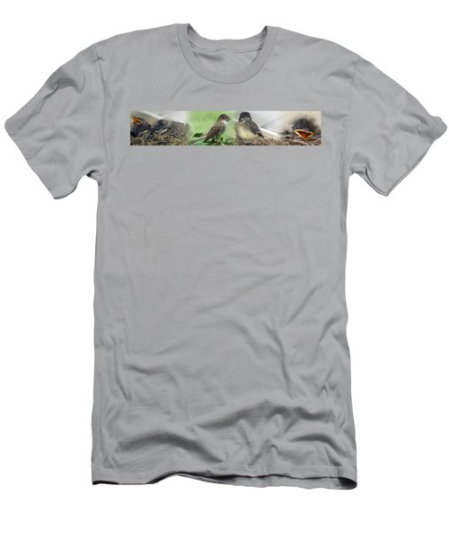 Eastern Phoebe Family Men's T-Shirt (Athletic Fit)