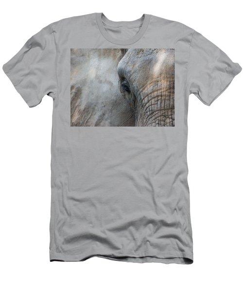 Elephant Portrait Men's T-Shirt (Athletic Fit)